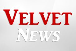 Velvet News
