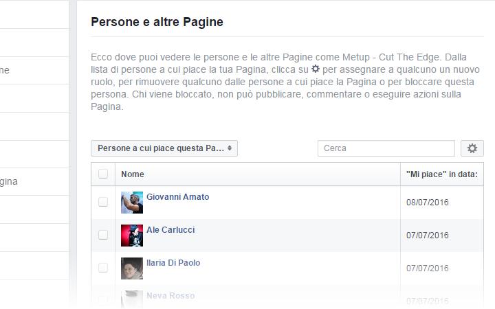 Facebook - Persone e Altre Pagine