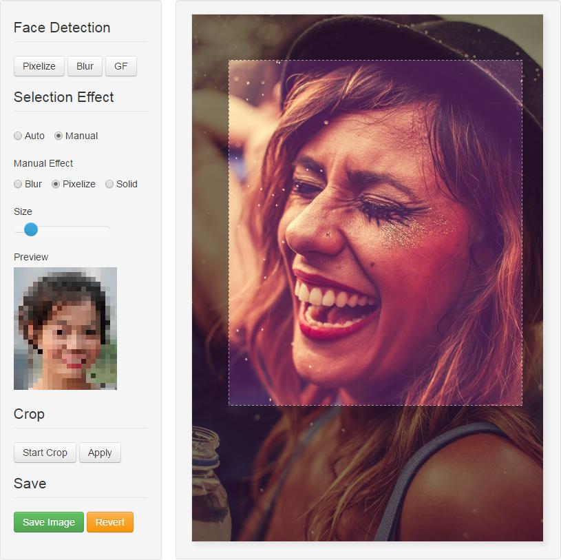 Facepixelizer - Drag Aera